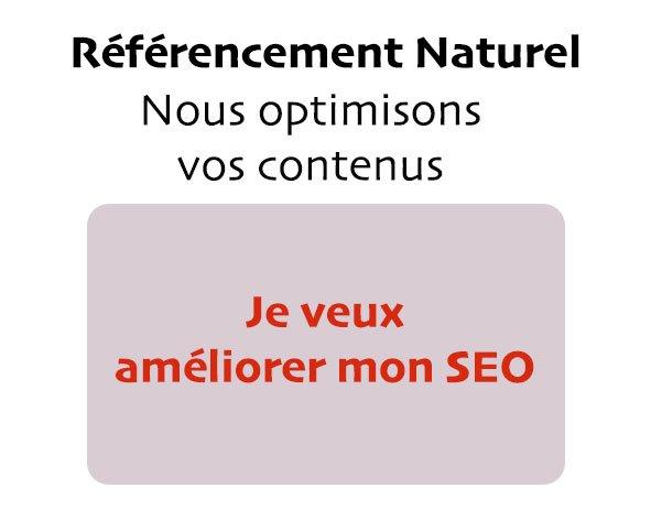 Audit SEO et référencement Naturel de votre site Web