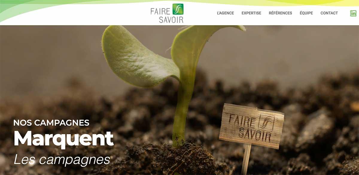 redaction article et newsletter poru l'agence Faire Savoir